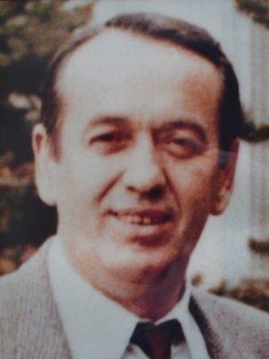 mitar-novakovic-1982-1985